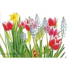 Fotomural TULIPS AND PEONY FT-0130