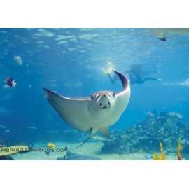 Fotomural UNDER WATER VIEW FT-0144