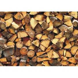 Fotomural WOOD LOGS FTM-0498