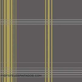 Papel Pintado ACCENTS DL30471