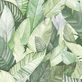 Papel Pintado BANANO 022