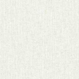 Papel Pintado LIENZO LISO 01